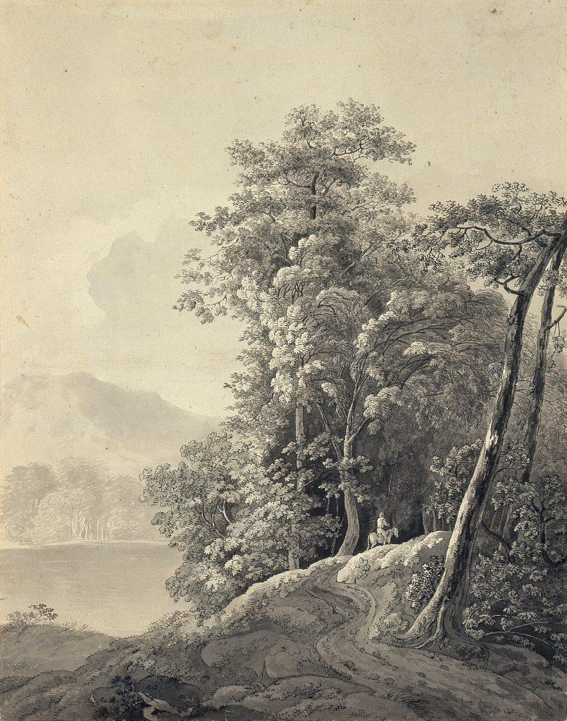 Adrian Zingg (1734–1816), Waldlandschaft am Wasser, 1784, Feder und Pinsel in Schwarz, laviert, 39,7 x 31,3 cm, Kunstsammlungen Chemnitz, Foto: Kunstsammlungen Chemnitz/May Voigt